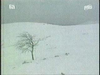 Тайнна перевала Дятлова (Документальный фильм из 7 серий. 5 серия. 1997 год)